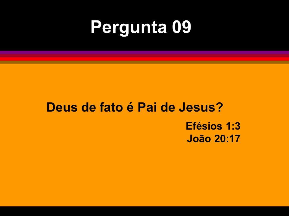Deus de fato é Pai de Jesus? Efésios 1:3 João 20:17 Pergunta 09