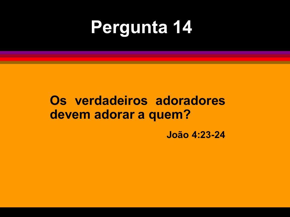 Os verdadeiros adoradores devem adorar a quem? João 4:23-24 Pergunta 14
