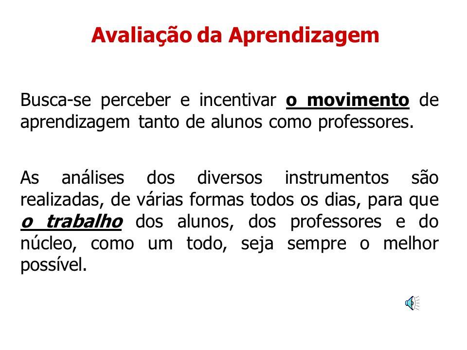 Instrumentos de Avaliação Diários dos alunos com os seus depoimentos, sugestões e avaliações.