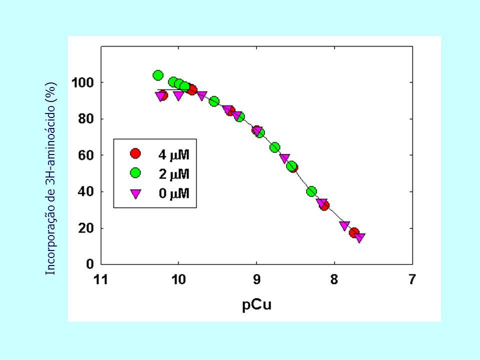 Incorporação de 3H-aminoácido (%)