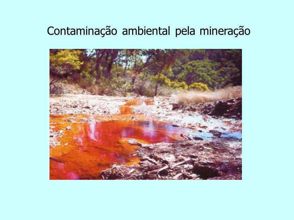 Contaminação ambiental pela mineração