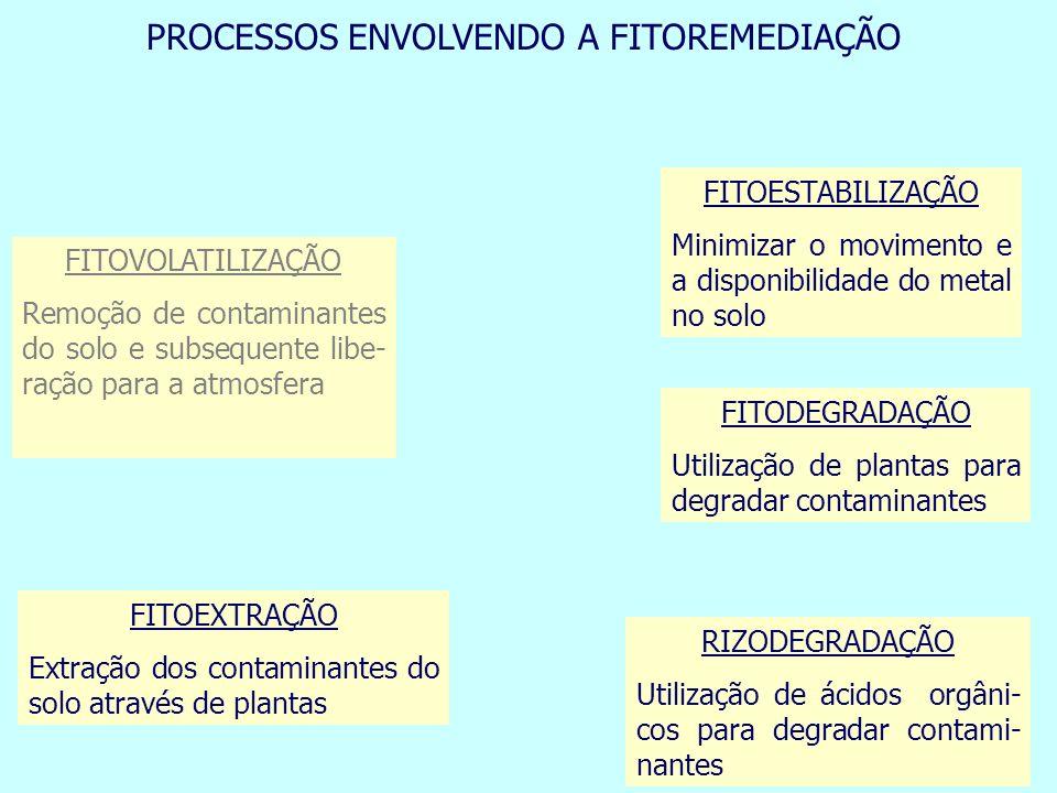 FITOVOLATILIZAÇÃO Remoção de contaminantes do solo e subsequente libe- ração para a atmosfera FITOEXTRAÇÃO Extração dos contaminantes do solo através