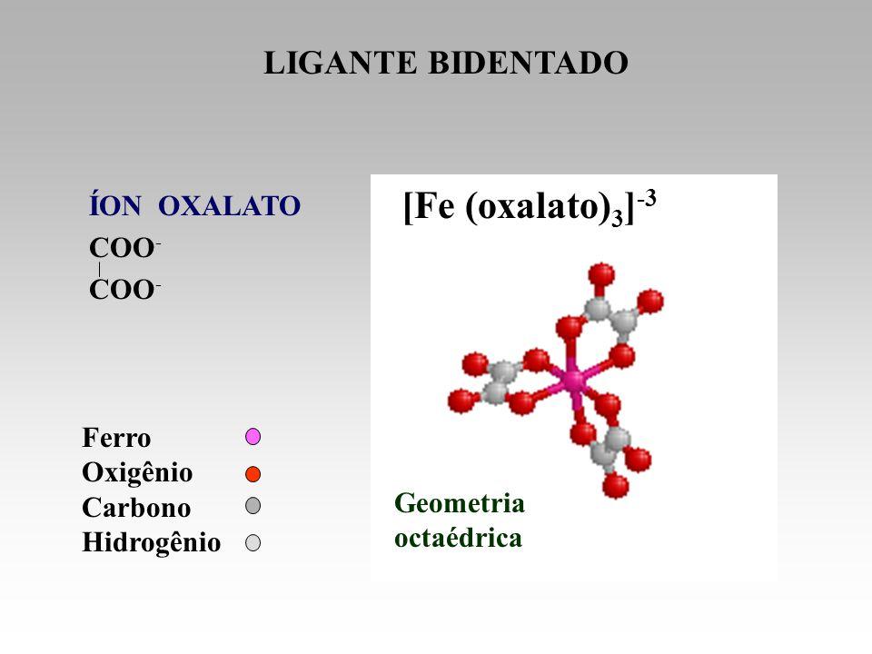 [Fe (oxalato) 3 ] -3 Ferro Oxigênio Carbono Hidrogênio LIGANTE BIDENTADO Geometria octaédrica ÍON OXALATO COO -