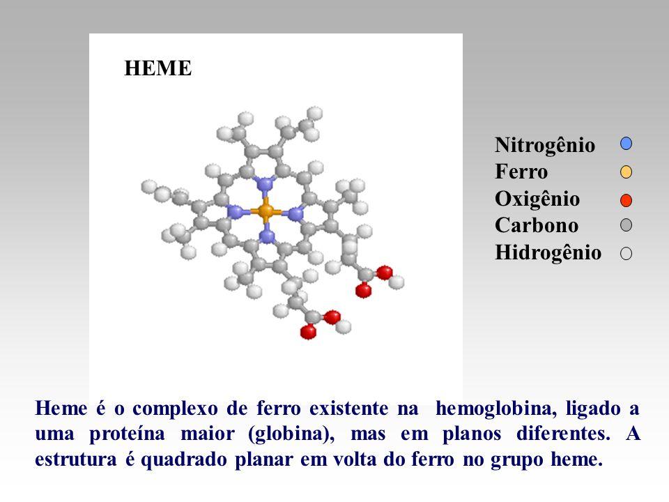 Heme é o complexo de ferro existente na hemoglobina, ligado a uma proteína maior (globina), mas em planos diferentes. A estrutura é quadrado planar em