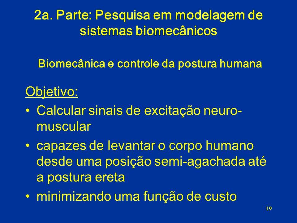 19 2a. Parte: Pesquisa em modelagem de sistemas biomecânicos Biomecânica e controle da postura humana Objetivo: Calcular sinais de excitação neuro- mu