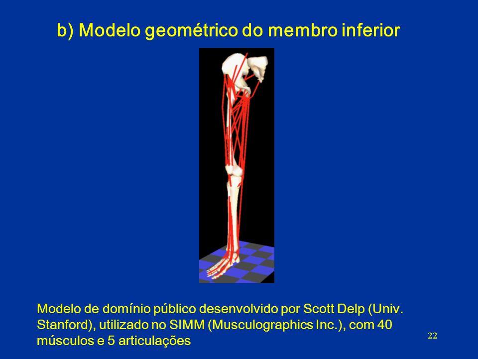 22 b) Modelo geométrico do membro inferior Modelo de domínio público desenvolvido por Scott Delp (Univ. Stanford), utilizado no SIMM (Musculographics