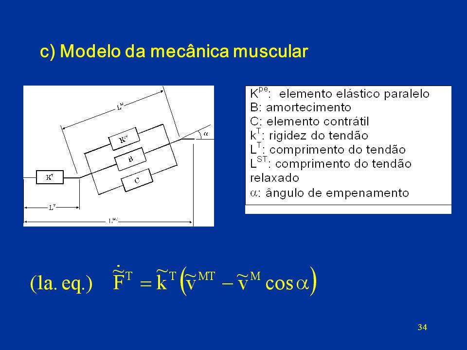 34 c) Modelo da mecânica muscular