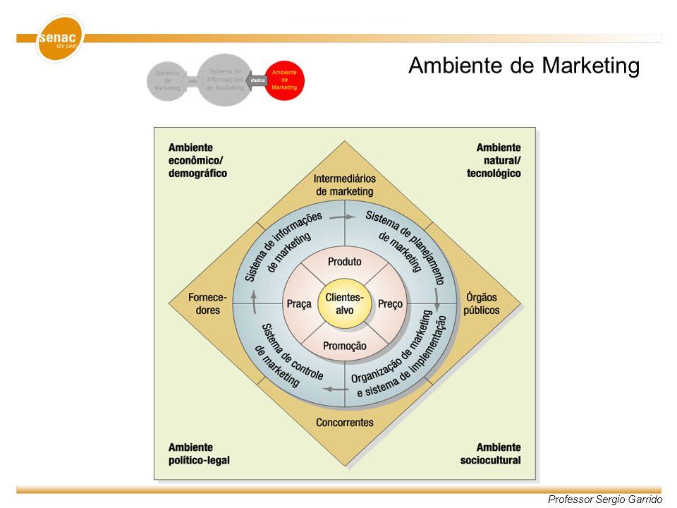 Professor Sergio Garrido Microambiente Macroambiente Interno Externo