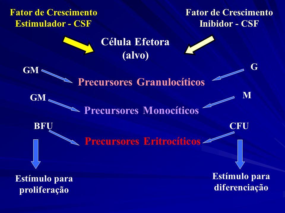 Fator de Crescimento Estimulador - CSF Fator de Crescimento Inibidor - CSF Célula Efetora (alvo) Precursores Granulocíticos Precursores Monocíticos Pr