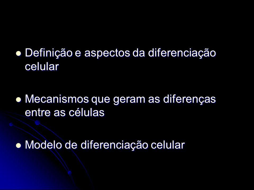 Diferenciação celular Células tornam-se diferentes entre si Células identidades distintas e funções especializadas Células com identidade definida = ex.: células musculares, células nervosas, células adiposas etc.