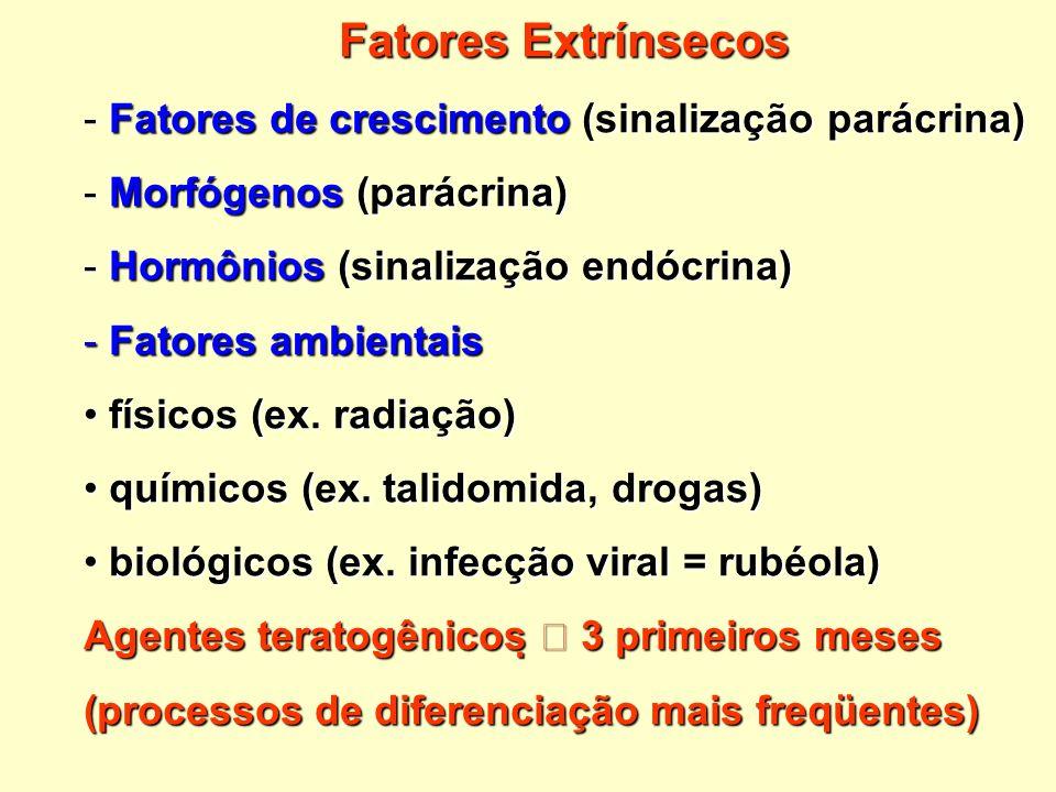 - Fatores de crescimento (sinalização parácrina) - Morfógenos (parácrina) - Hormônios (sinalização endócrina) - Fatores ambientais físicos (ex. radiaç