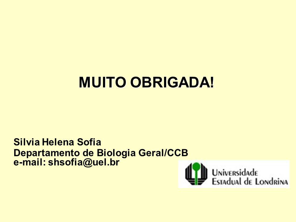 MUITO OBRIGADA! MUITO OBRIGADA! Silvia Helena Sofia Departamento de Biologia Geral/CCB e-mail: shsofia@uel.br