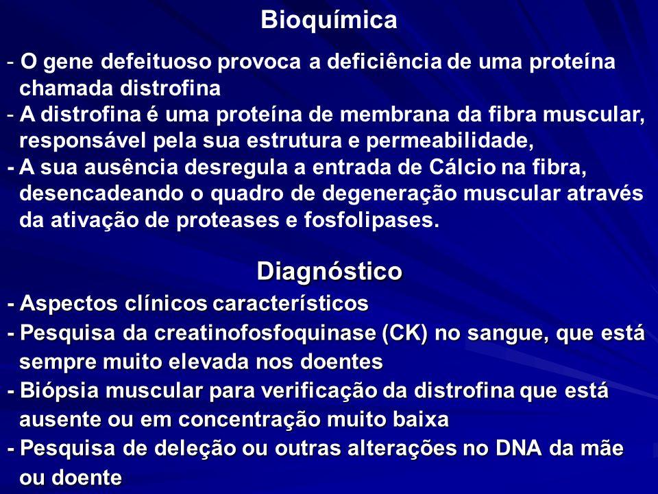 Diagnóstico - Aspectos clínicos característicos - Pesquisa da creatinofosfoquinase (CK) no sangue, que está sempre muito elevada nos doentes sempre mu