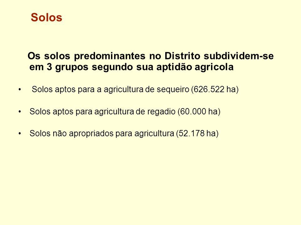 Solos Os solos predominantes no Distrito subdividem-se em 3 grupos segundo sua aptidão agricola Solos aptos para a agricultura de sequeiro (626.522 ha