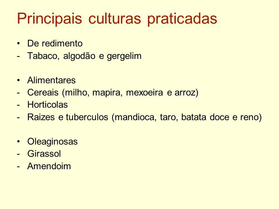 Principais culturas praticadas De redimento -Tabaco, algodão e gergelim Alimentares -Cereais (milho, mapira, mexoeira e arroz) -Horticolas -Raizes e t
