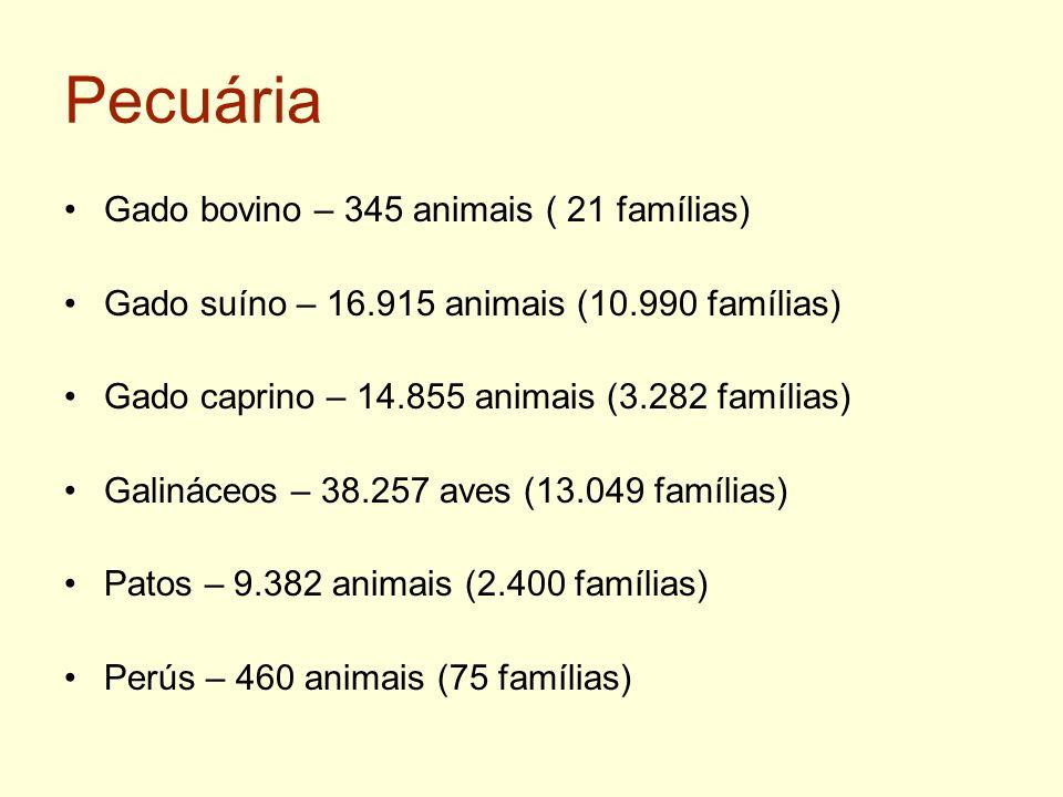 Pecuária Gado bovino – 345 animais ( 21 famílias) Gado suíno – 16.915 animais (10.990 famílias) Gado caprino – 14.855 animais (3.282 famílias) Galinác