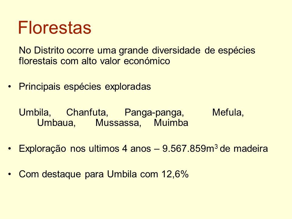 Florestas No Distrito ocorre uma grande diversidade de espécies florestais com alto valor económico Principais espécies exploradas Umbila, Chanfuta, P