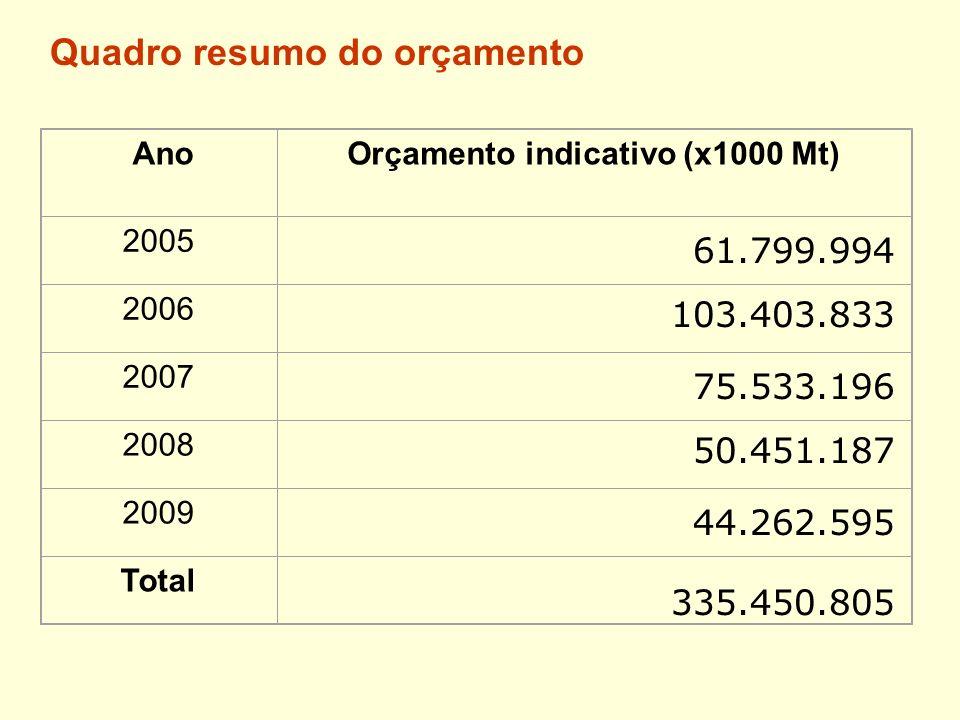 Quadro resumo do orçamento AnoOrçamento indicativo (x1000 Mt) 2005 2006 2007 2008 2009 Total 335.450.805 61.799.994 103.403.833 75.533.196 50.451.187