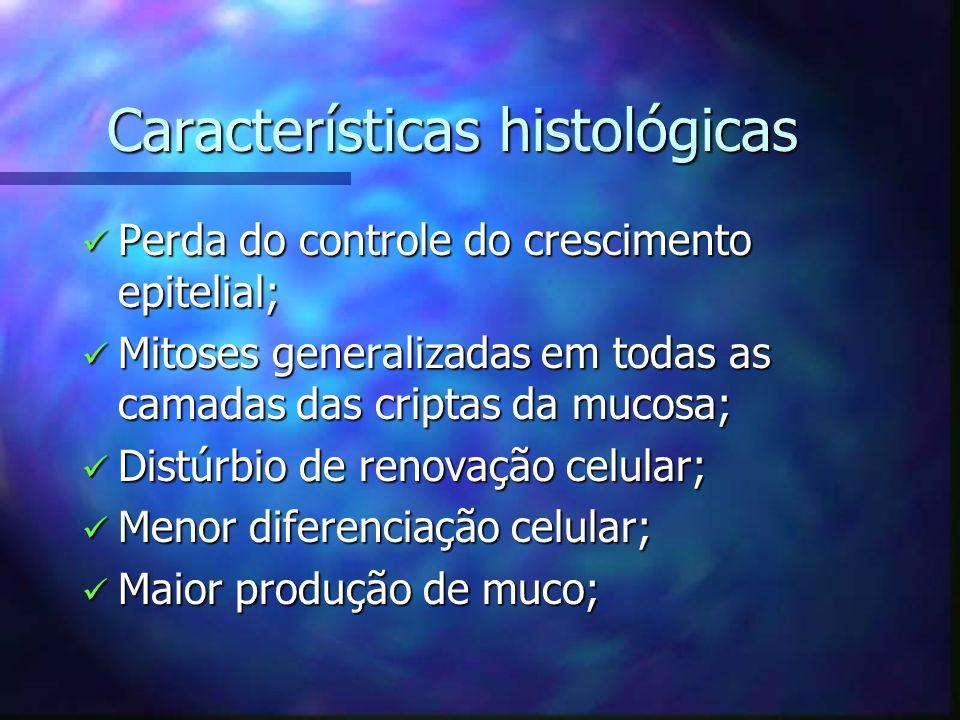 Características histológicas Características histológicas Perda do controle do crescimento epitelial; Perda do controle do crescimento epitelial; Mito