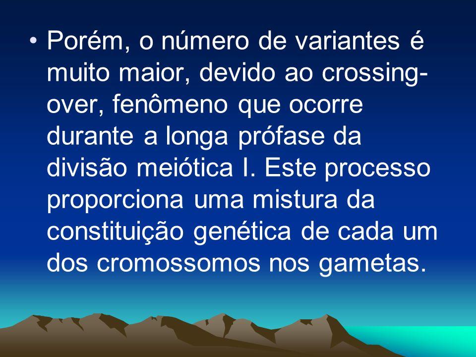 Deste processo, um indivíduo poderia, a princípio, produzir 2n gametas diferentes, onde n é o número de haplóide de cromossomos. Em seres humanos, por