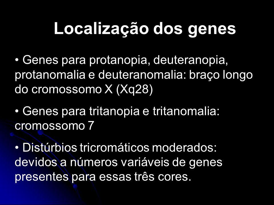 Localização dos genes Genes para protanopia, deuteranopia, protanomalia e deuteranomalia: braço longo do cromossomo X (Xq28) Genes para tritanopia e t