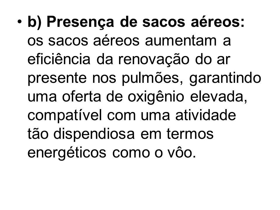 b) Presença de sacos aéreos: os sacos aéreos aumentam a eficiência da renovação do ar presente nos pulmões, garantindo uma oferta de oxigênio elevada,