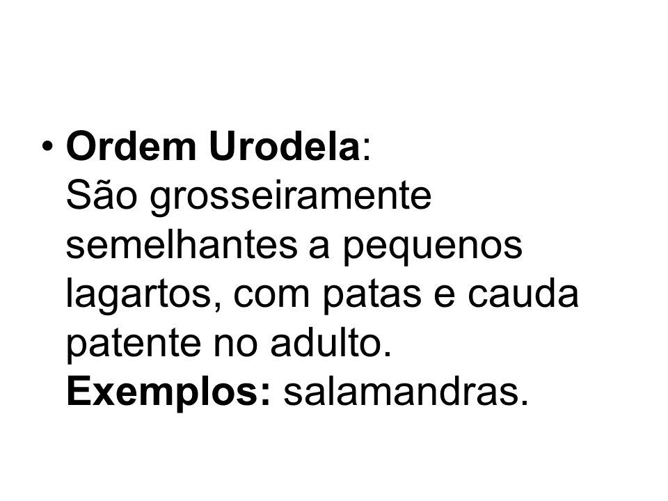 Ordem Urodela: São grosseiramente semelhantes a pequenos lagartos, com patas e cauda patente no adulto. Exemplos: salamandras.