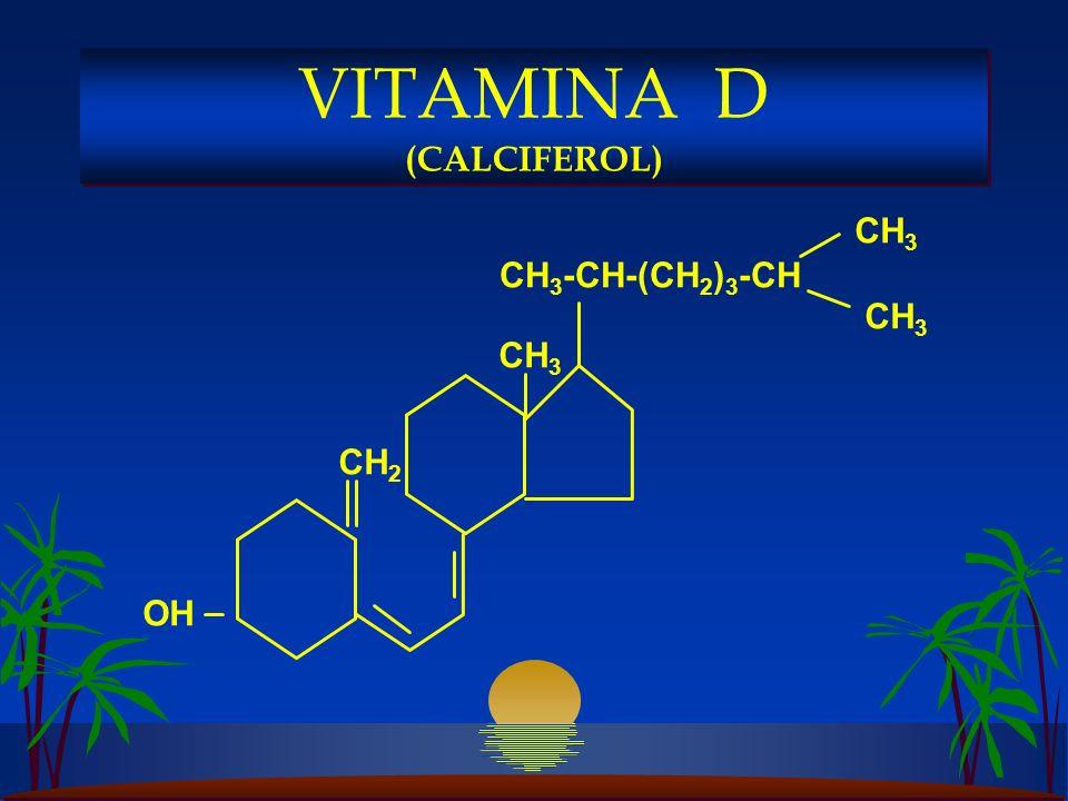 CH 3 -CH-(CH 2 ) 3 -CH CH 3 CH 2 OH VITAMINA D (CALCIFEROL)