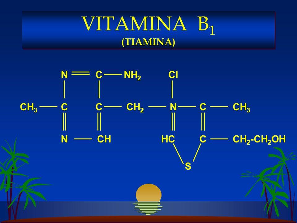 CH 3 NH 2 CH 3 CC C C C N NCHCH 2 -CH 2 OH CH 2 N HC Cl S VITAMINA B 1 (TIAMINA)
