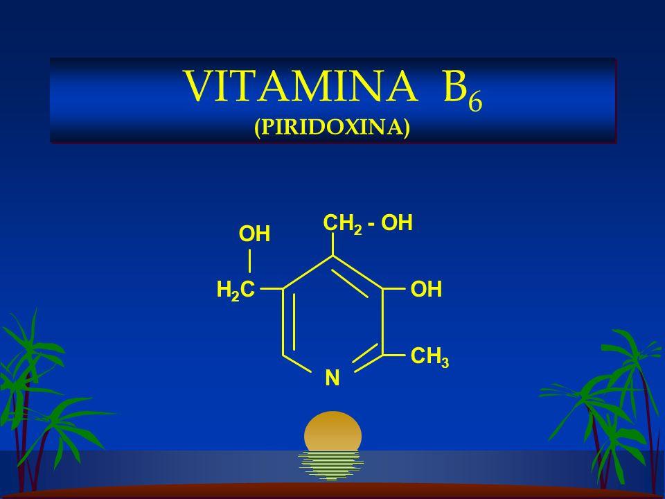 OH CH 2 - OH H2CH2COH CH 3 N VITAMINA B 6 (PIRIDOXINA)