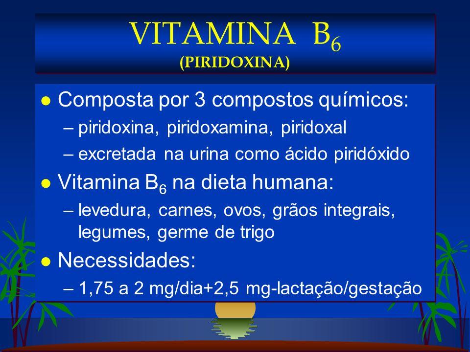 l Composta por 3 compostos químicos: –piridoxina, piridoxamina, piridoxal –excretada na urina como ácido piridóxido l Vitamina B 6 na dieta humana: –levedura, carnes, ovos, grãos integrais, legumes, germe de trigo l Necessidades: –1,75 a 2 mg/dia+2,5 mg-lactação/gestação l Composta por 3 compostos químicos: –piridoxina, piridoxamina, piridoxal –excretada na urina como ácido piridóxido l Vitamina B 6 na dieta humana: –levedura, carnes, ovos, grãos integrais, legumes, germe de trigo l Necessidades: –1,75 a 2 mg/dia+2,5 mg-lactação/gestação VITAMINA B 6 (PIRIDOXINA)