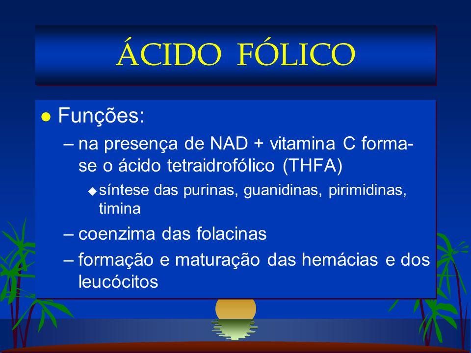 l Funções: –na presença de NAD + vitamina C forma- se o ácido tetraidrofólico (THFA) u síntese das purinas, guanidinas, pirimidinas, timina –coenzima das folacinas –formação e maturação das hemácias e dos leucócitos l Funções: –na presença de NAD + vitamina C forma- se o ácido tetraidrofólico (THFA) u síntese das purinas, guanidinas, pirimidinas, timina –coenzima das folacinas –formação e maturação das hemácias e dos leucócitos ÁCIDO FÓLICO