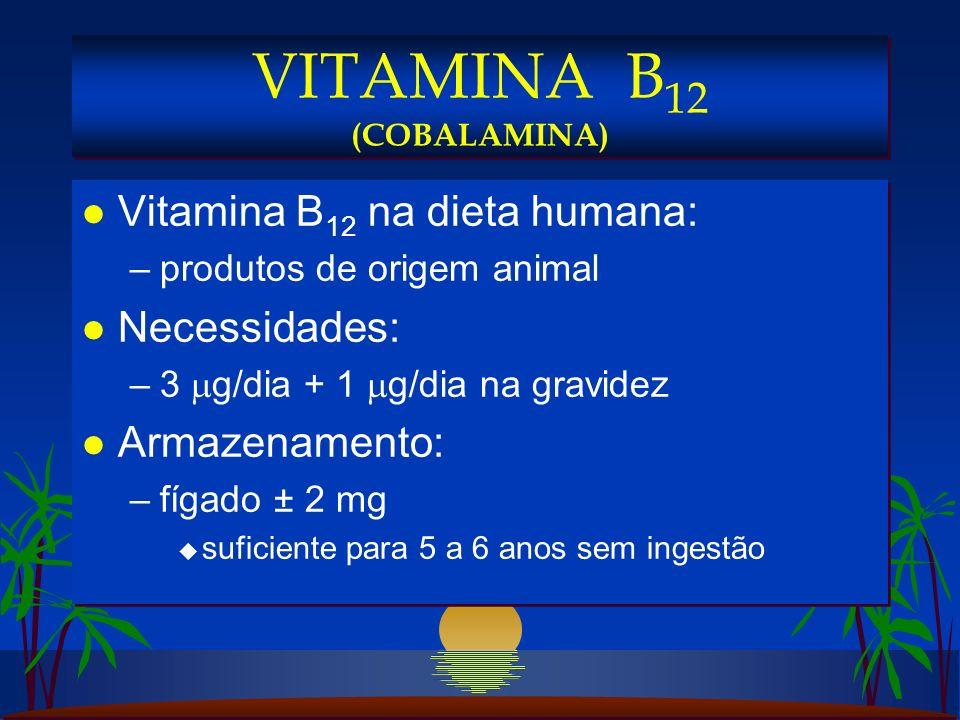 l Vitamina B 12 na dieta humana: –produtos de origem animal l Necessidades: –3 g/dia + 1 g/dia na gravidez l Armazenamento: –fígado ± 2 mg u suficiente para 5 a 6 anos sem ingestão l Vitamina B 12 na dieta humana: –produtos de origem animal l Necessidades: –3 g/dia + 1 g/dia na gravidez l Armazenamento: –fígado ± 2 mg u suficiente para 5 a 6 anos sem ingestão VITAMINA B 12 (COBALAMINA)