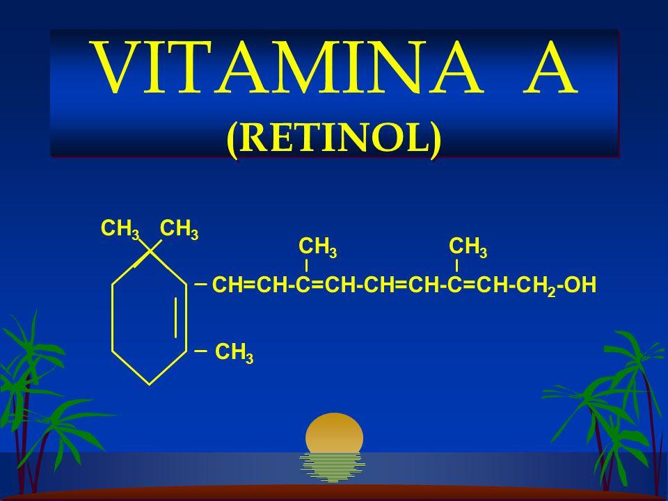CH 3 CH=CH-C=CH-CH=CH-C=CH-CH 2 -OH CH 3 VITAMINA A (RETINOL)