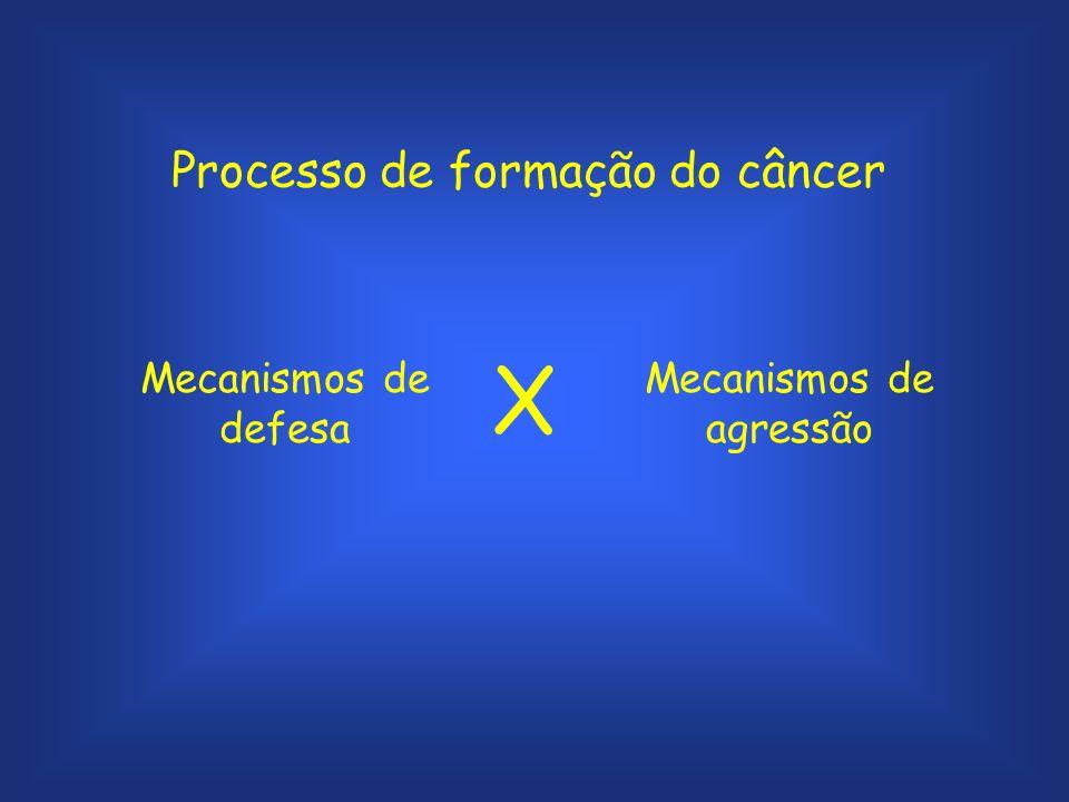 Processo de formação do câncer Mecanismos de defesa Mecanismos de agressão X
