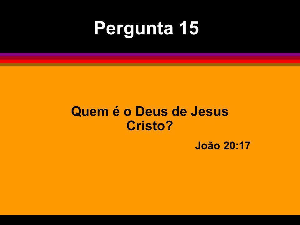 Quem é o Deus de Jesus Cristo? João 20:17 Pergunta 15
