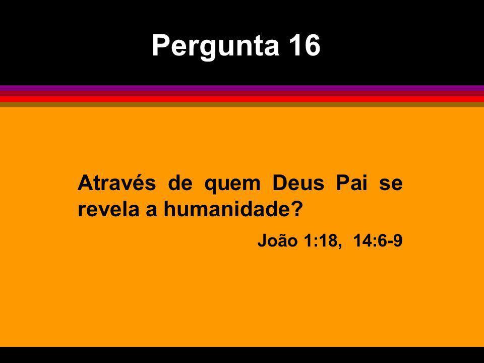 Através de quem Deus Pai se revela a humanidade? João 1:18, 14:6-9 Pergunta 16