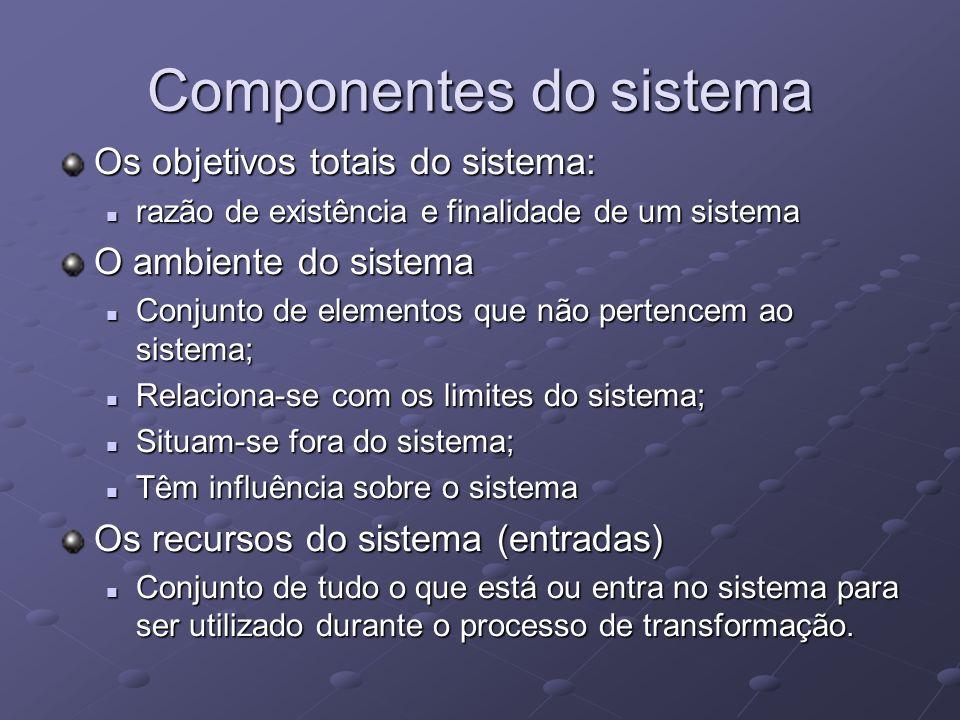 Componentes do sistema Os objetivos totais do sistema: razão de existência e finalidade de um sistema razão de existência e finalidade de um sistema O