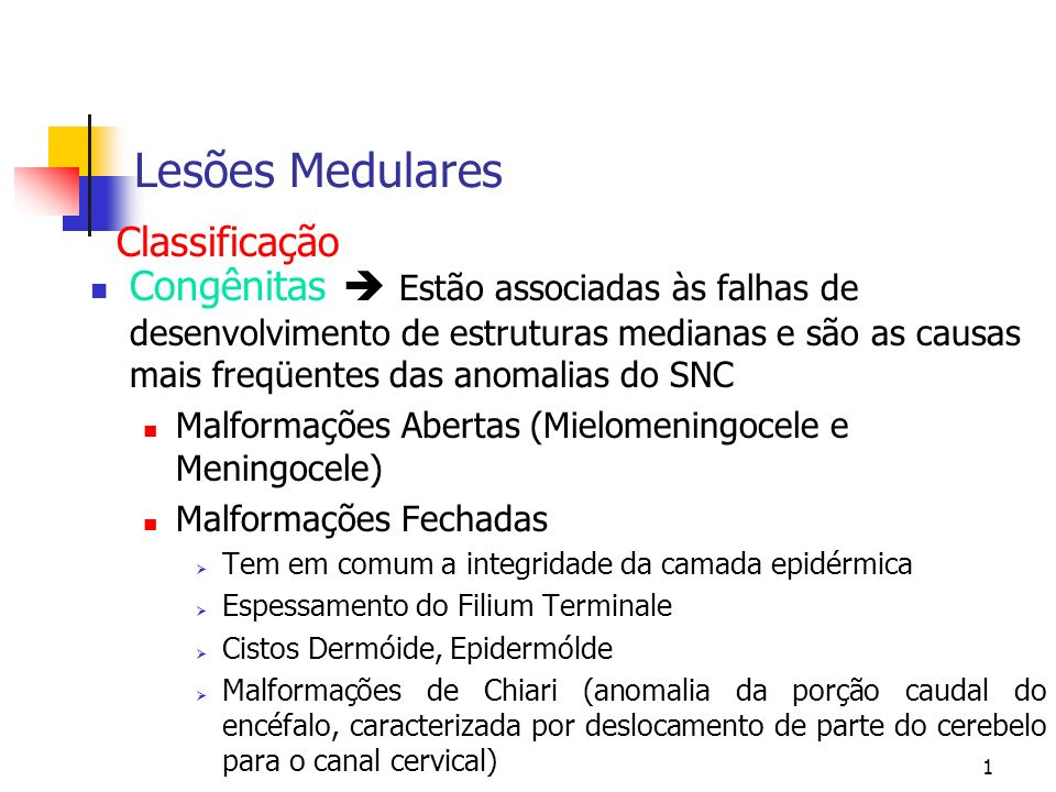 1 Lesões Medulares Congênitas Estão associadas às falhas de desenvolvimento de estruturas medianas e são as causas mais freqüentes das anomalias do SNC Malformações Abertas (Mielomeningocele e Meningocele) Malformações Fechadas Tem em comum a integridade da camada epidérmica Espessamento do Filium Terminale Cistos Dermóide, Epidermólde Malformações de Chiari (anomalia da porção caudal do encéfalo, caracterizada por deslocamento de parte do cerebelo para o canal cervical) Classificação