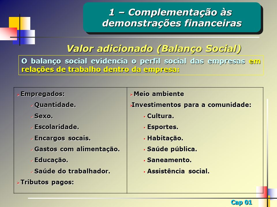 Cap 01 Valor adicionado (Balanço Social) O balanço social evidencia o perfil social das empresas em relações de trabalho dentro da empresa: Empregados