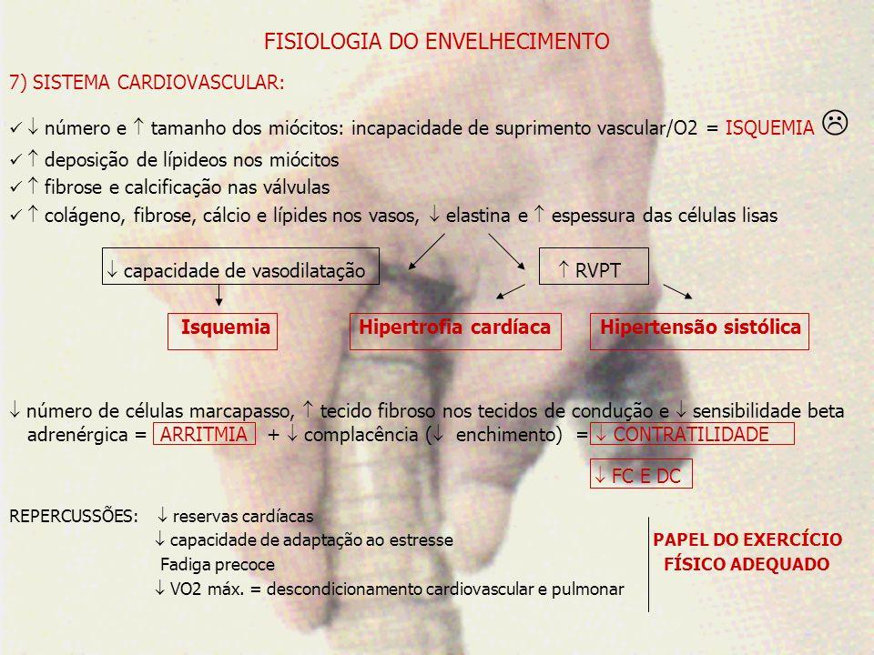 FISIOLOGIA DO ENVELHECIMENTO 8) SISTEMA RESPIRATÓRIO: rigidez traquéia e brônquios elasticidade e contratilidade dos bronquíolos número e motilidade dos cílios camada de muco e o número de glândulas secretoras Alargamento das paredes alveolares superfície respiratória e interface alvéolo-capilar Desequilíbrio ventilação x perfusão complacência pulmonar + elasticidade = esvaziamento Volume ResidualRetifica diafragma + Tecido não contrátil nos mm capilares musculares força e resistência muscular Redução na posição e eficiência dos músculos respiratórios e da tosse Calcificação das cartilagens costais + movimentos das costelas + cifose torácica = diâmetro AP do tórax REPERCUSSÕES: PaO2 metabolismo anaeróbico = acidose = lactato consumo energético Fadiga precoce e percepção subjetiva do esforço reservas tempo de recuperação pós-exercício Papel dos Exercícios Físicos Orientados