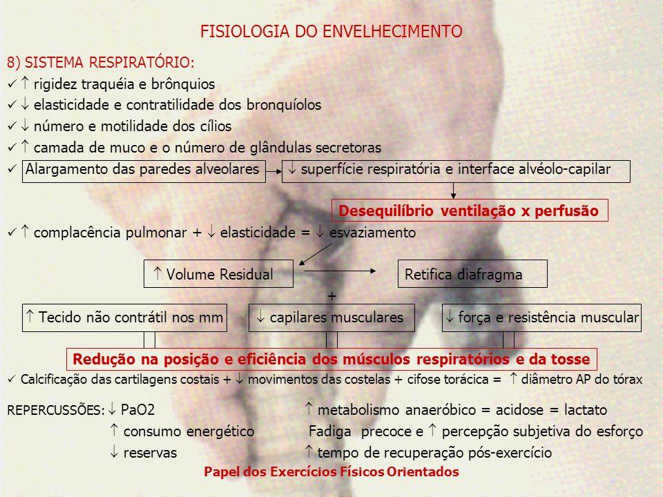 FISIOLOGIA DO ENVELHECIMENTO 9) SISTEMA VASCULAR: Artérias: Camada íntima: espessura (calcificação e lípides) = difusão de O2 Camada média: calcificação = contração mm lisos Camada adventícia: Fibras elásticas e colágeno = complacência e da contração rigidez e redução do fluxo sanguíneo para os tecidosaumento da RVPT incapacidade de desviar sangueelevação da PAD Veias: eficiência das válvulas venosas = alteração do fluxo unidirecional = RV e edema Sistema Nervoso Autônomo: sítios beta-adrenérgicos = predomínio dos alfa-adrenérgicos = VASOCONSTRIÇÃO Estiramento vascular = reflexo barorreceptor = HIPOTENSÃO ORTOSTÁTICA REPERCUSSÕE: Fadiga precoce resposta simpática: incapacidade de DC e O2 ao esforço PAS e PAD desproporcional à intensidade do esforço resposta local ao do metabolismo capacidade de termorregulação: ineficiência dos mecanismos de dissipação aporte sanguíneo para os músculos em exercício extração de oxigênio pelos músculos fibras tipo II: do metabolismo anaeróbico = fadiga