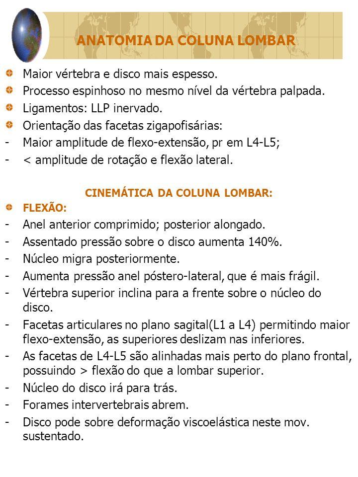 ANATOMIA DA COLUNA LOMBAR Maior vértebra e disco mais espesso.