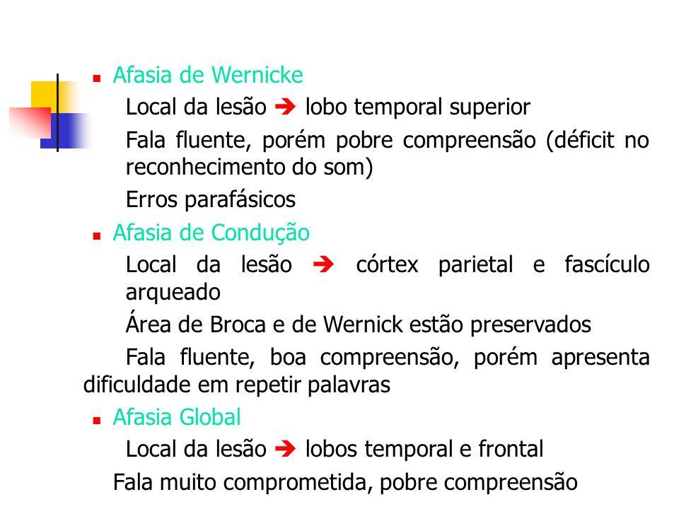 Afasia de Wernicke Local da lesão lobo temporal superior Fala fluente, porém pobre compreensão (déficit no reconhecimento do som) Erros parafásicos Af
