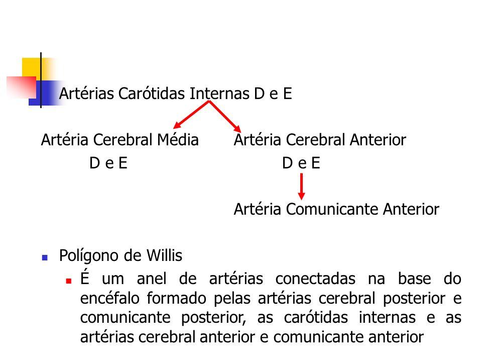 Artérias cerebrais e suprimento das regiões cerebrais As artérias cerebrais anterior, média e posterior dão ramos corticais e ramos centrais Ramos profundos vascularizam o diencéfalo, os núcleos da base e cápsula interna Ramos corticais Artéria Cerebral Anterior Superfície medial e órbita do Lobo Frontal; parte mais alta da face súpero- lateral de cada hemisfério, onde limita-se com o território da cerebral média