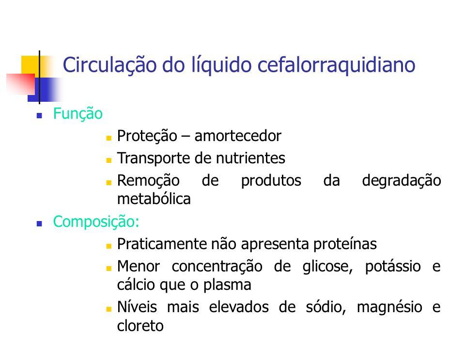 Volume total: 100 a 125 mL Produção: Plexo Coróide ( ventrículos laterais) Alterações circulatórias Aumento patológico do volume de LCR Alteração da sua composição Reabsorção disfuncional do LCR