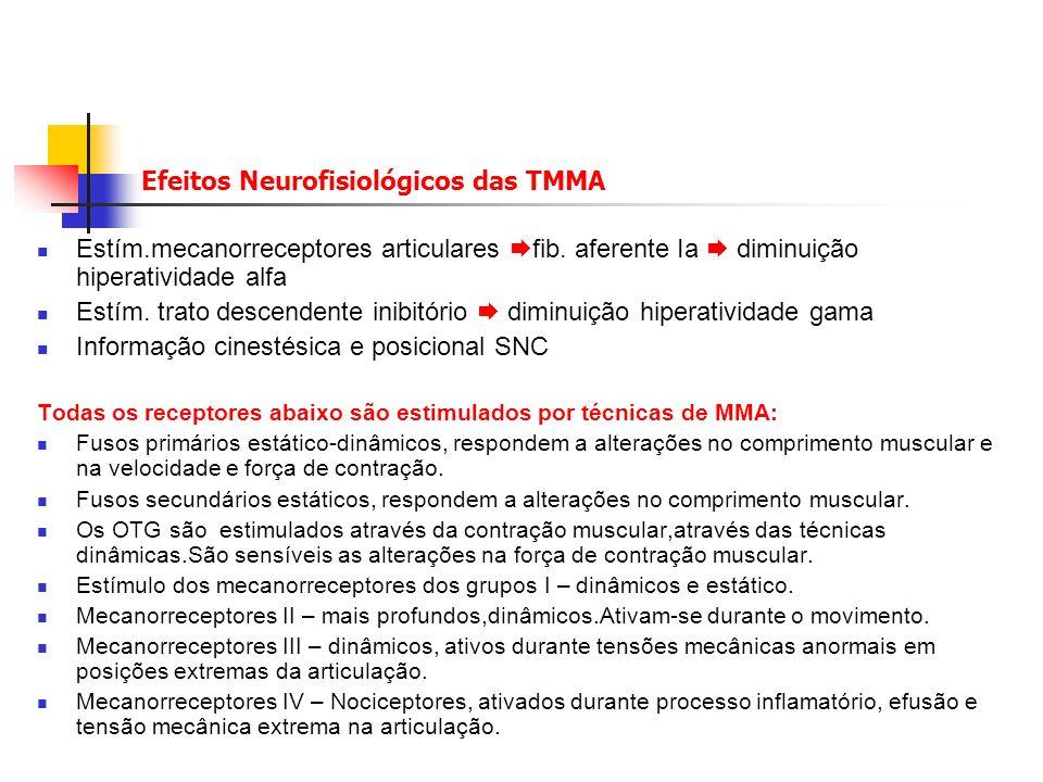 Efeitos Neurofisiológicos das TMMA Estím.mecanorreceptores articulares fib.