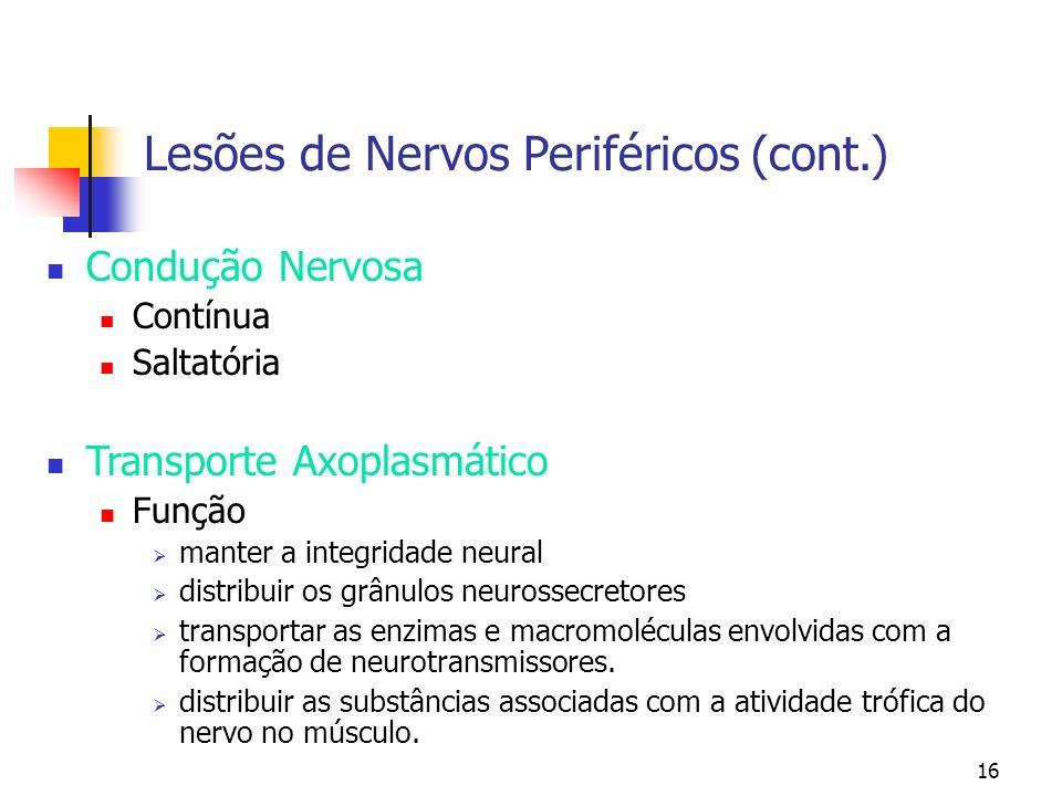 16 Lesões de Nervos Periféricos (cont.) Condução Nervosa Contínua Saltatória Transporte Axoplasmático Função manter a integridade neural distribuir os