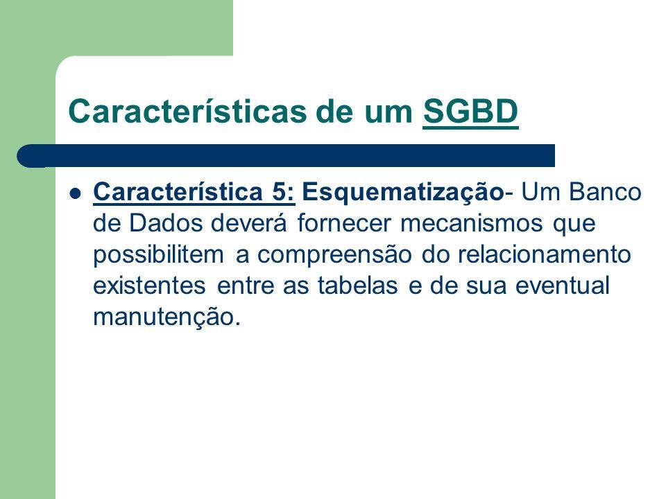 Características de um SGBD Característica 5: Esquematização- Um Banco de Dados deverá fornecer mecanismos que possibilitem a compreensão do relacionam