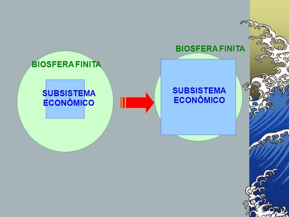BIOSFERA FINITA SUBSISTEMA ECONÔMICO BIOSFERA FINITA
